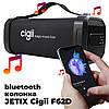 Портативная Bluetooth колонка Cigii F62D Original, фото 5