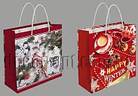 Подарочные новогодние картонные пакеты 35МК 171*166*66мм/1шт А