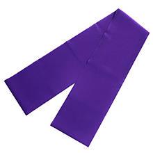 Ленточный эспандер замкнутый фиолетовый