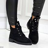 Модельные зимние черные замшевые женские ботинки в заклепках низкий ход  36-23,5см, фото 6