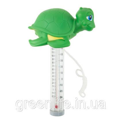 Kokido Термометр игрушка Kokido K785BU/6P Черепаха
