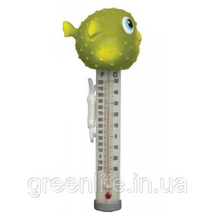 Kokido Термометр игрушка Kokido K265DIS/6P Рыбка-фугу