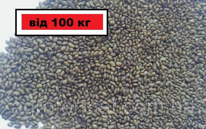 Люцерна семена от 100 кг