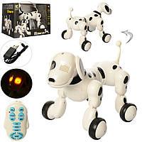 """Дитяча інтерактивна собака """"ROBODOG"""" з пультом управління"""
