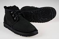 Сапоги мужские UGG Neumel Black, черные замша, фото 1