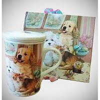 Чашка заварочная 330 мл с фильтром и крышкой в подарочной коробке, фото 1