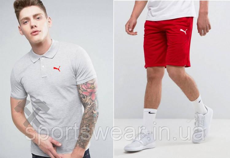 Мужской комплект поло + шорты Puma серого и красного цвета