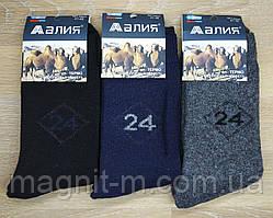 """Чоловічі зимові шкарпетки """"Алія"""". Вержья шерсть на махре. №607."""