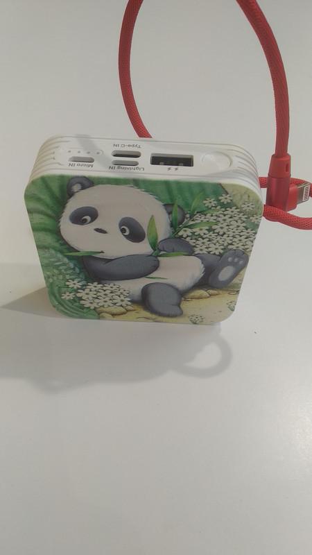Power Bank Konfulon 10000 mAh (M50000) c цельным кабелем микро, панда