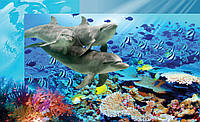Фотообои 3D 254x184 см Дельфины и кораллы (072P4)
