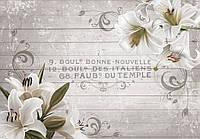 Фотообои 254x184 см Цветы лилии на досках (10050P4)