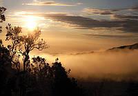 Фотообои 368x254 см Восход солнца над лесом (10137P8)
