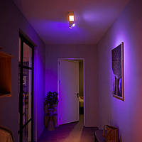 PHILIPS HUE White and Color Ambiance CENTRIS White 915005928301, фото 1