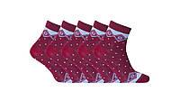 Носки женские демисезонные 10 пар Лана Lycra, узор бордовые, размер 36-40, фото 1
