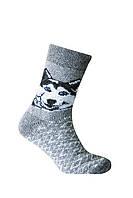 Шкарпетки чоловічі Лео Вовняні Хаскі Сірі