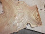 Слэб вяз,карагач, фото 6