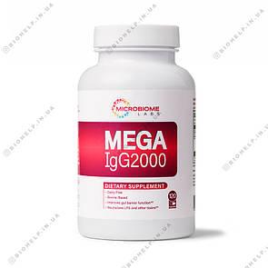 Microbiome Labs Mega IgG 2000 / Мега IgG 2000 120 капс
