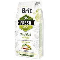 Сухой корм для активных собак всех пород с уткой Brit Fresh Duck with Millet 2,5 кг (170998)