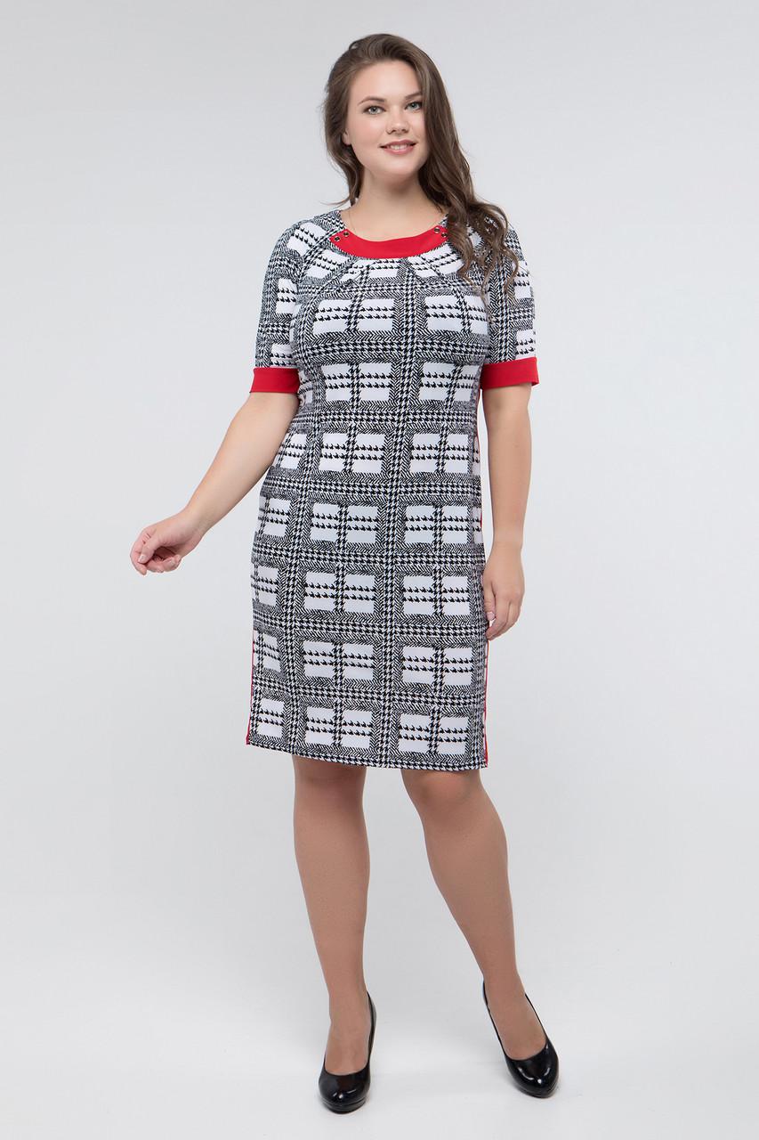 Платье черно-белый принт красный Иванна 52