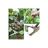 Степлер для подвязки растений усиленный TAPETOOL, фото 10