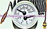 Термоманометр 40 мм 0-4 bar 0-120*C (б.ф.у, EU) Vaillant Turbo Max, Atmo Max Pro/Plus, арт. 101270A, к.з. 0775, фото 4