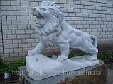 Скульптуры львы из мрамора, фото 2
