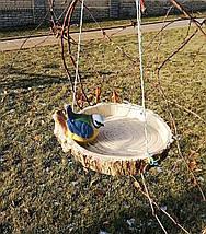 Кормушка для птиц синичка на сосне, фото 3