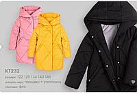 Бембі курточка для дівчинки арт.кт232