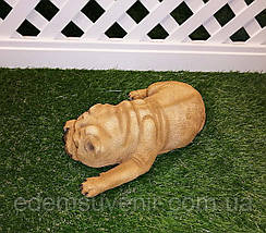 Садовая фигура собака Шарпей спящий, фото 2