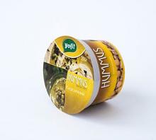 """Хумус, середземноморська закуска Класична, ТМ """"Yofi"""", 250г"""