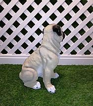 Садовая фигура собака Мопс сидящий, фото 3