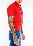 Мужская рубашка Gelix 1237003 красная, фото 3