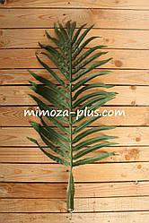 Лист финиковой пальмы, 86 см