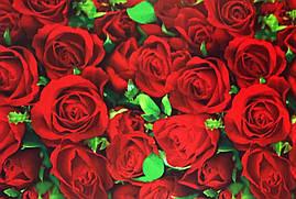 """Подарочная бумага для упаковки подарков """" Розы с зелеными листочками """" , размер 707х1000 мм"""