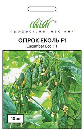 Эколь F1 семена огурца, 10 семян — огурец партенокарпический, Syngenta, фото 2