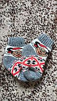 Дитячі носки 💯% шерсть, фото 2