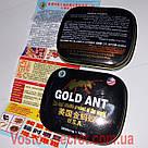 Золотой Муравей - Gold Ant - Препарат для потенции, 10табл*3800мг. (Голд ант), фото 3