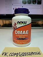 Повышение ацетилхолина препараты для мозговой активности Now Foods DMAE 250 mg 100 капсул нау фудс