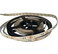 Фитолента 12V(SMD2835) premium, фото 1