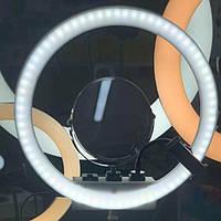Кольцевая LED лампа MM-988 + зеркало (35см)