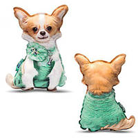 [PT3D-14] Чихуахуа в плаття, реалістична іграшка-подушка, (Оригинал)