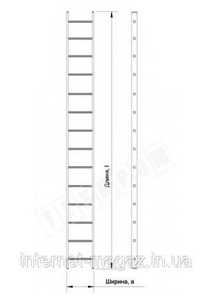 Алюминиевая односекционная приставная усиленная лестница на 14 ступеней (полупрофессиональная), фото 2