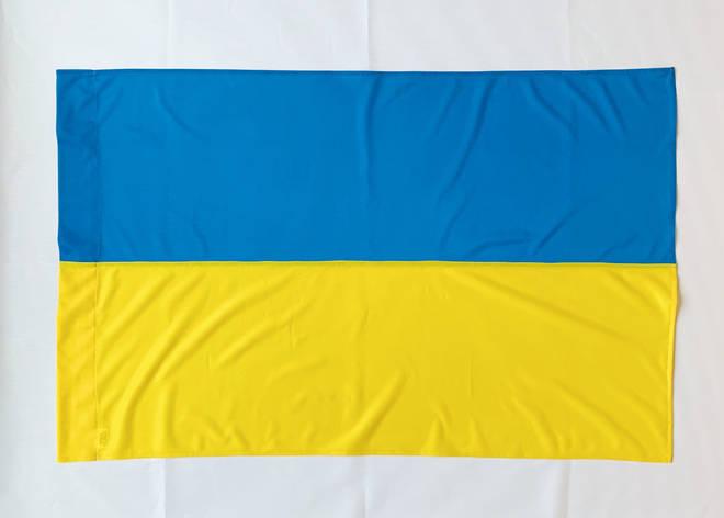 Флаг Украины - Флажная сетка, фото 2