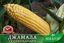 ТМ МНАГОР Кукуруза сахарная Джамала F1 200шт