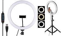 Кільцева LED лампа діаметром 26 см FW-260 з пультом Black (6900)