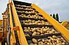 Транспортер для картофелеуборочного комбайна Ploeger, фото 5