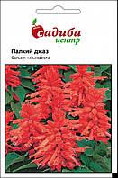 Семена Сальвия Горячий джаз, 0,1 г. Hem Genetics (Голландия), фото 1