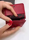Женский кожаный кошелек tony bellucci, фото 3