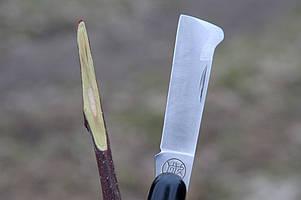 Як вибрати ніж для щеплення?