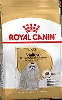 Royal Canin Maltese Adult Сухой корм для собак породы Мальтийская болонка 0.5 кг